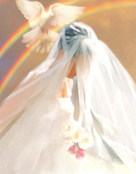 the-bride-ready-10